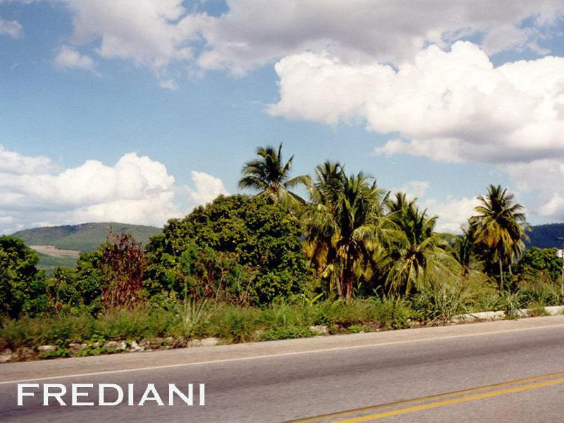 Les tourmalines d'Aracuaï